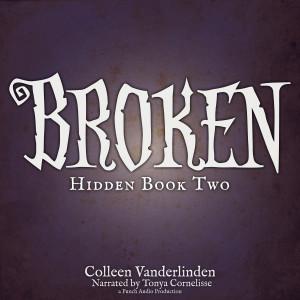 BrokenAudioBookCover